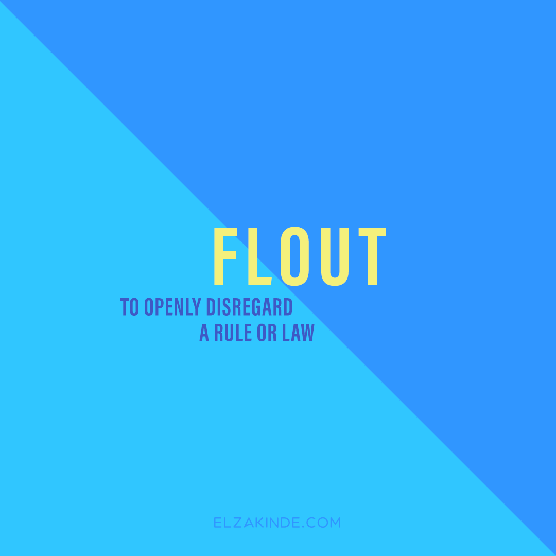 graphic-wordnerd-flout