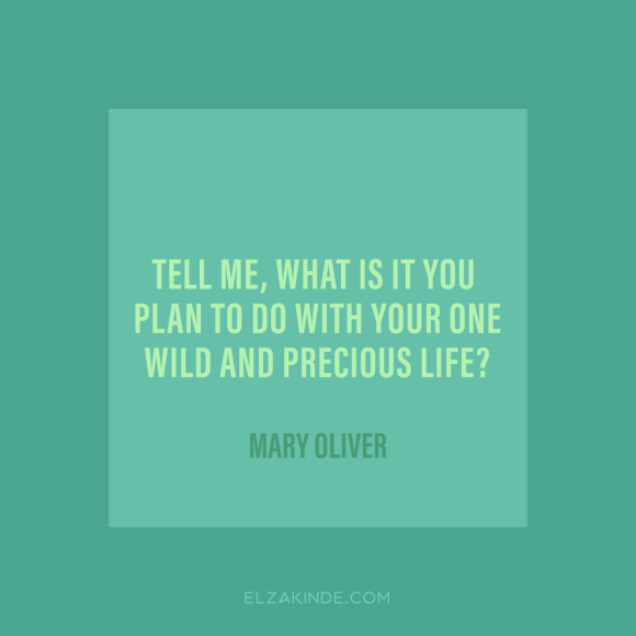 """tell me, what is it you plan to do with your one wild and precious life?"" -Mary Oliver"