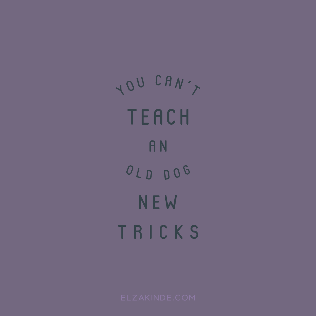"""you can't teach an old dog new tricks"""