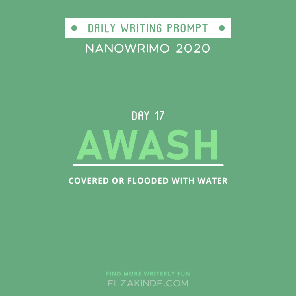 Daily Writing Prompt Day 17: AWASH | Covered or flooded with water.