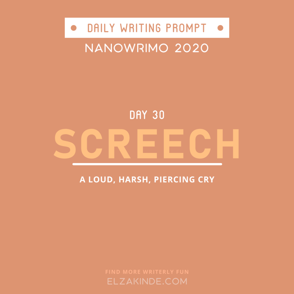 Daily Writing Prompt Day 30: SCREECH | A loud, harsh, piercing cry.