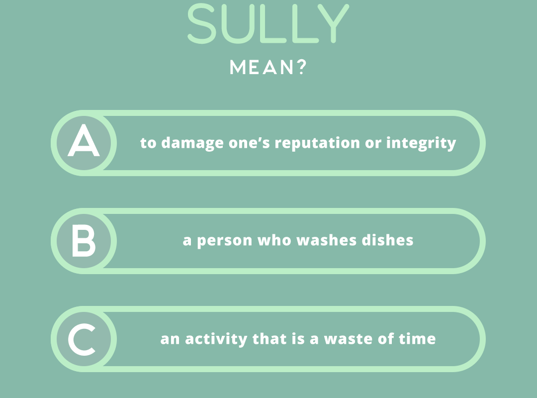 what does the word SULLY mean?