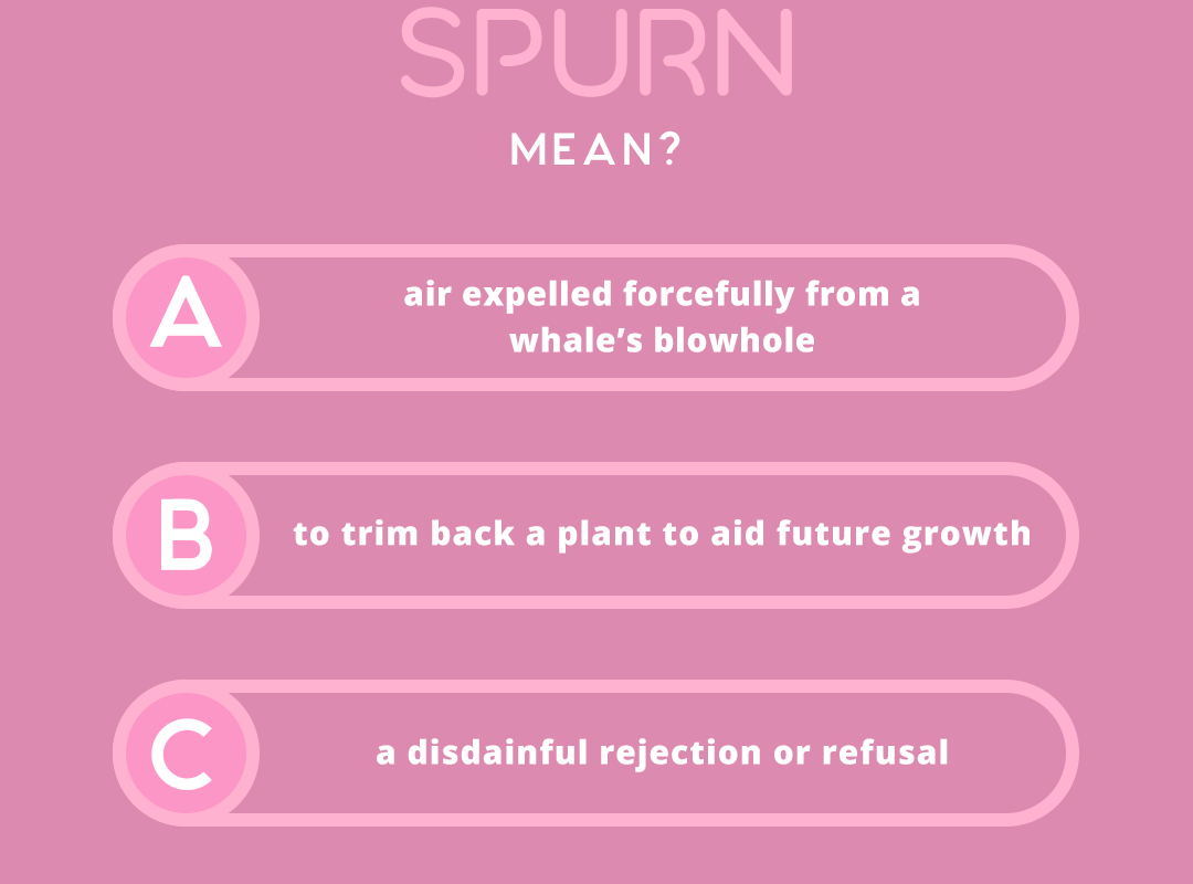 what does the word SPURN mean?